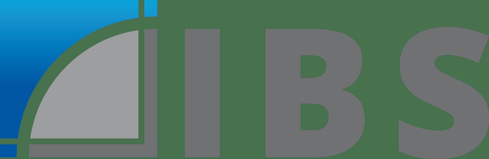 IndustrieBau Service